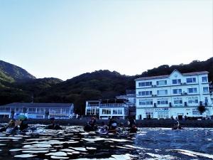201031大瀬崎ダイビング (87)