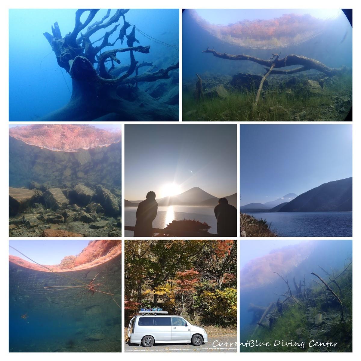 本栖湖クリーンアップ2020年 (1)