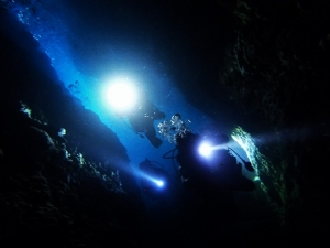 201213熱海ダイビング (140)