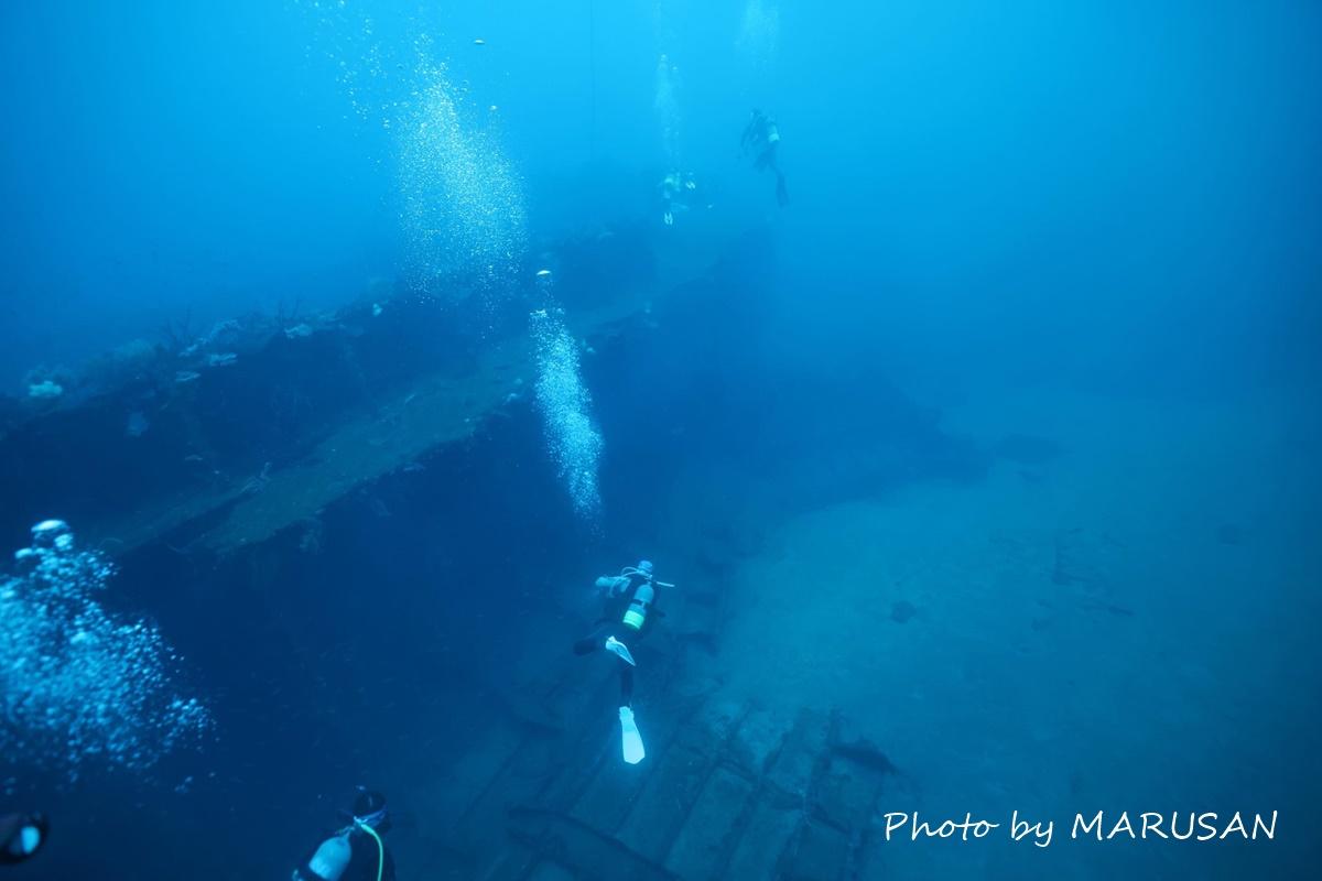 熱海冬ダイビング (6)