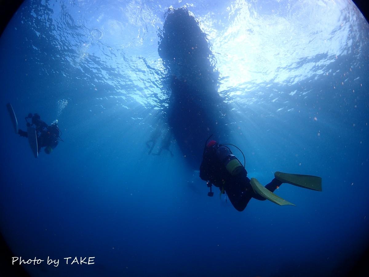 熱海冬ダイビング (16)