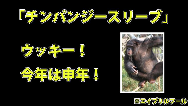 チンパンジースリーブ
