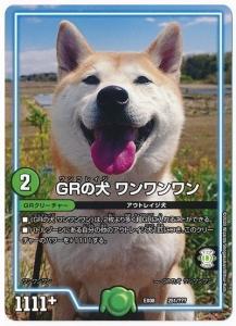 GRの犬ワンワンワン2