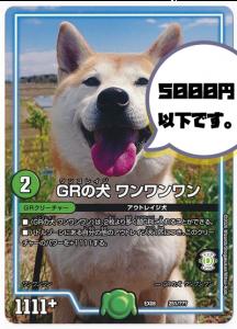 20201101 GRの犬