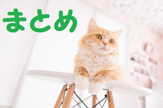 cat458A8566_TP_V.jpg