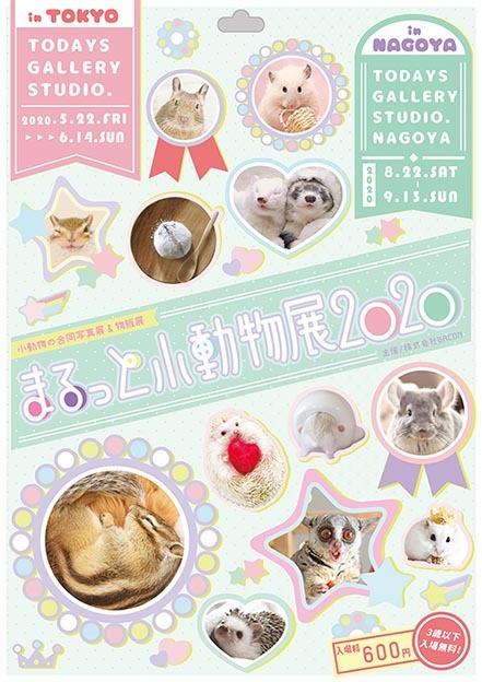 【修正版】まるっと小動物展2020_T_s