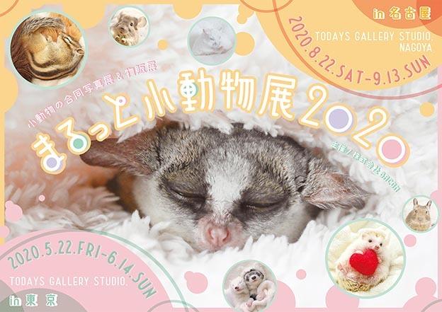 【修正版】まるっと小動物展2020_Y_s