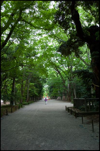 20120604_M9_kyoto-048_620.jpg