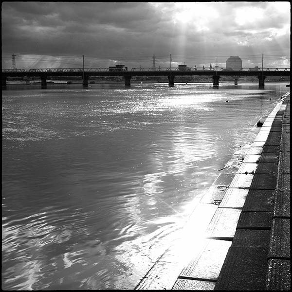 信濃川の岸辺で