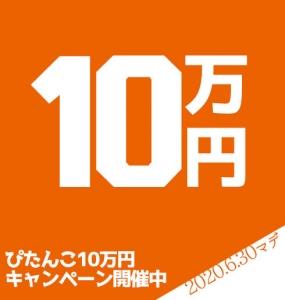 ぴたんこ10