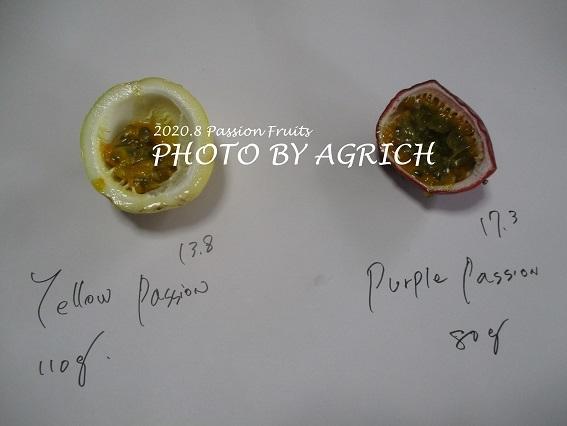 パッションフルーツ比較2