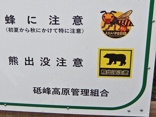 蜂と熊に注意