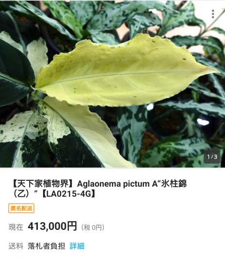 Screenshot_20200616-180124.png