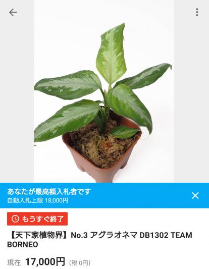 Screenshot_20200621-214125.png