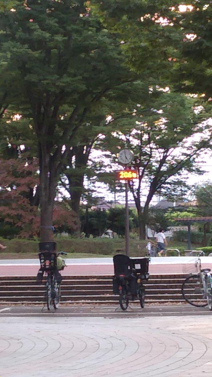 公園の温度計_p