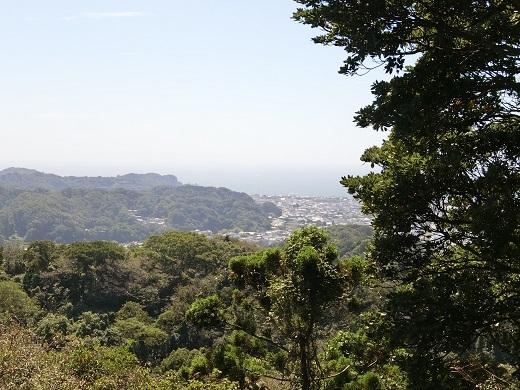 天園ハイキングコース鎌倉十王岩の展望