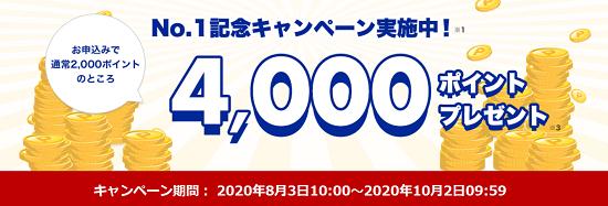 楽天でんき 4,000pt