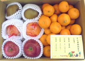 冬の果物詰合わせ