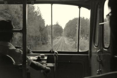 南部縦貫鉄道 車窓風景1