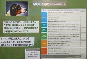 DSC_5504.jpg