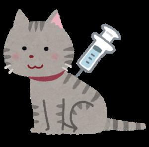cat_chuusya_yobou_20200418205844c8b.png