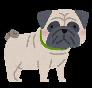 dog_pug_202007231923075e2.png
