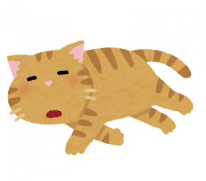 pet_darui_cat.png