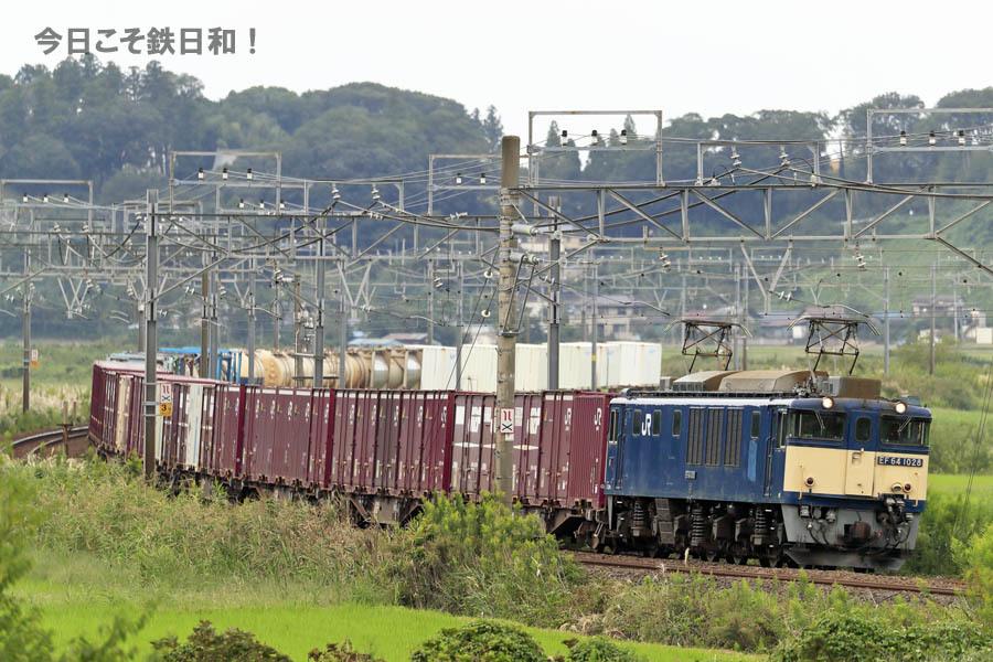 _MG20083.jpg