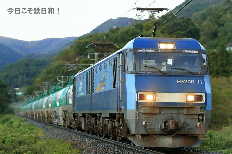 _MG20404.jpg