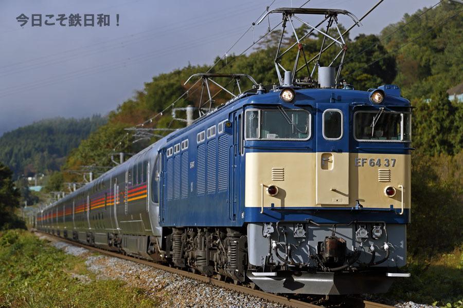 _MG20468.jpg