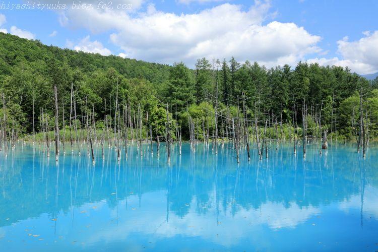 5Z2A9078 白金 青い池SN