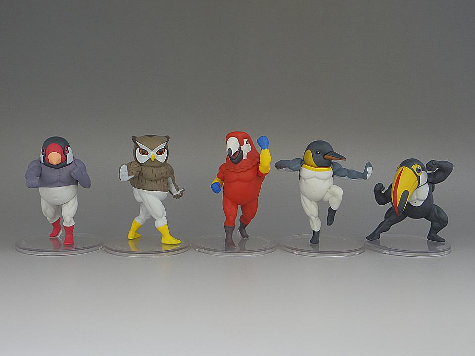 ガチムチ鳥4-1