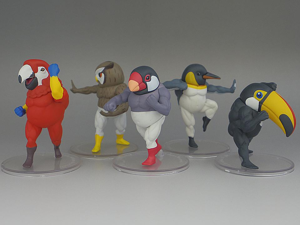 ガチムチ鳥4-38