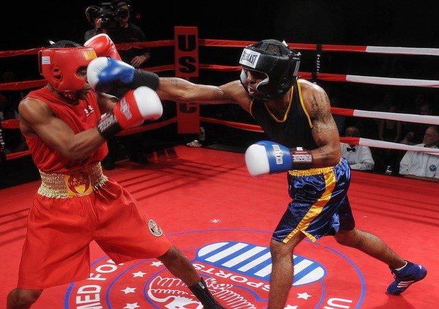 boxers-652385_640.jpg