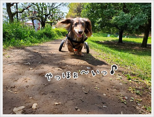 fc2_2020-04-26_01.jpg