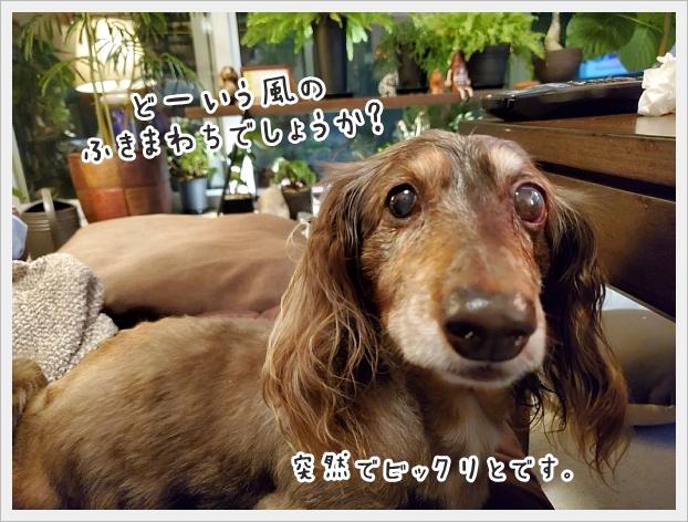 fc2_2020-07-14_01.jpg