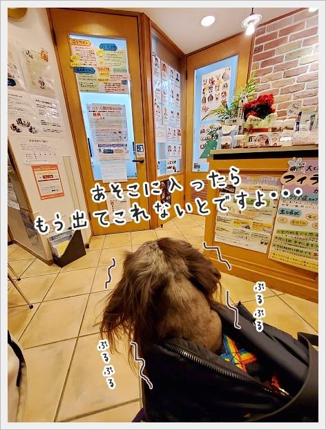 fc2_2020-12-17_04.jpg