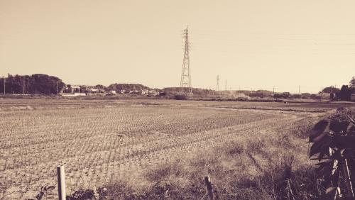 photo27.jpg