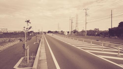 photo28.jpg