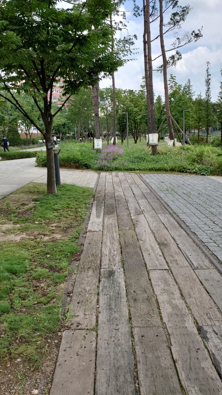 kyongich043.jpg