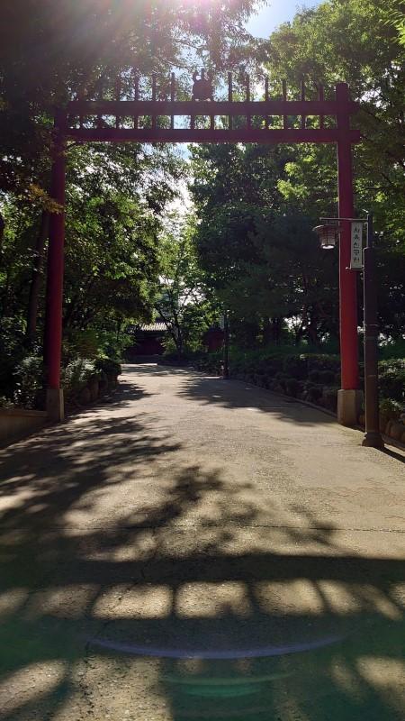 noryanjinkouen005.jpg