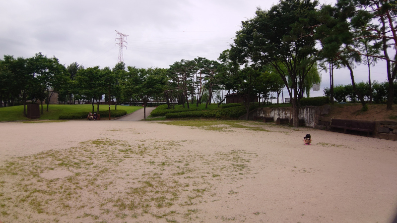 sonyudo20010.jpg
