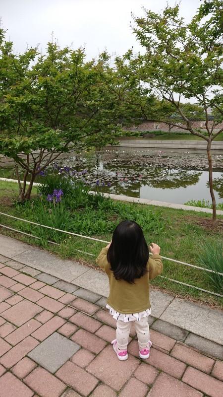 yongsanko006.jpg