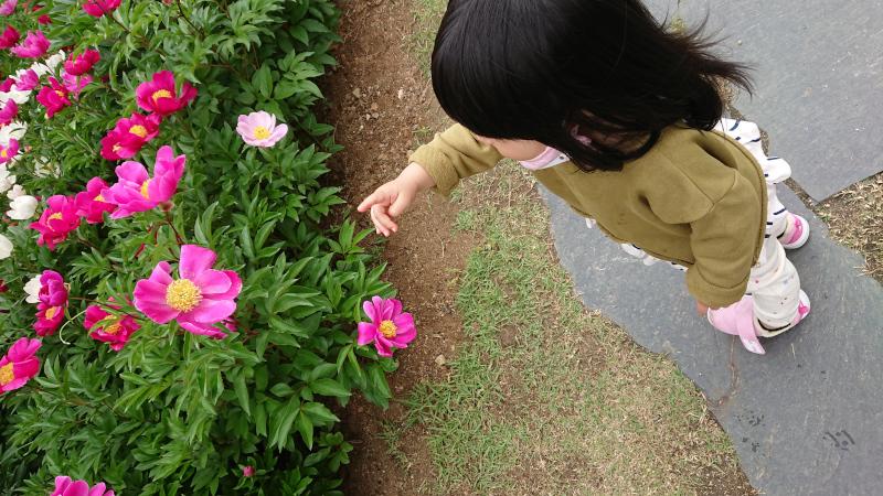yongsanko007.jpg