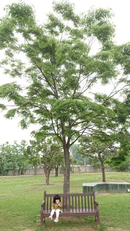 yongsanko015.jpg