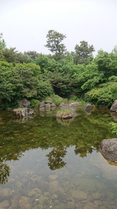 yongsanko021.jpg