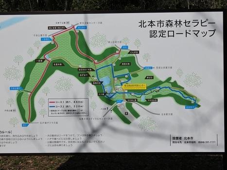 きれぎれの風彩「北本自然観察公園 0224」200321-2