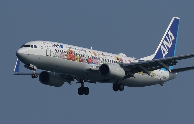 G-208.jpg