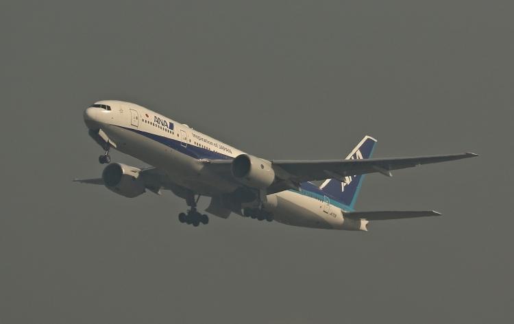 G-875.jpg