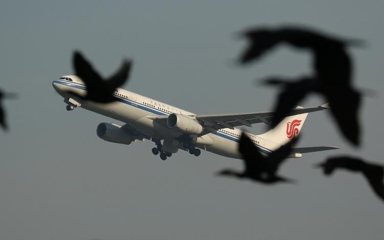 G-934.jpg